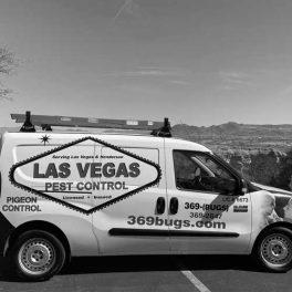 Las-Vegas-Pest-Control-Image-JPG